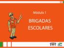 Cursos de Brigadas Escolares - Brigadas Escolares