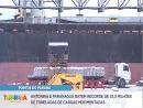 Portos do Paraná batem recorde de 53,3 milhões de toneladas de cargas movimentadas