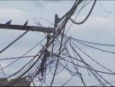 Copel flagra 43 irregularidades por dia no sistema elétrico do Paraná