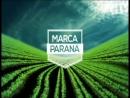 Marca Paraná - Piscicultura - Parte 2