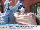 Paraná é destaque nacional em destinação correta de embalagens de defensivos agrícolas