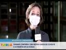 Covid-19: Paraná confirma 1.386 novos casos e 43 mortes