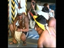 É-Paraná - Mês do Índio